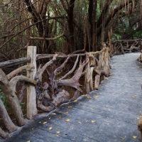 Brücke in Yucatán